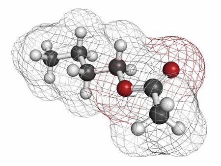 hidr�geno: Butil mol�cula de etilo. Se utiliza como saborizante de fruta sint�tico y como disolvente org�nico. Los �tomos se representan como esferas con codificaci�n de colores convencionales: hidr�geno (blanco), carb�n (gris), ox�geno (rojo). Foto de archivo