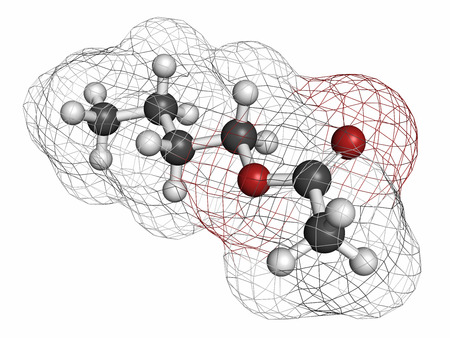 solvent: Butyl acetate molecule. Used as synthetic fruit flavoring and as organic solvent. Atoms are represented as spheres with conventional color coding: hydrogen (white), carbon (grey), oxygen (red).