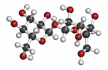 Trehalose (Mykose, tremalose) Zuckermolekül. Wasserstoff (weiß), Kohlenstoff (grau), Sauerstoff (rot): Atome werden als Kugeln mit herkömmlichen Farbcodierung dargestellt. Standard-Bild - 43793605
