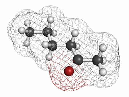 solvent: Methyl butyl ketone (MBK, 2-hexanone) solvent molecule. Atoms are represented as spheres with conventional color coding: hydrogen (white), carbon (grey), oxygen (red).