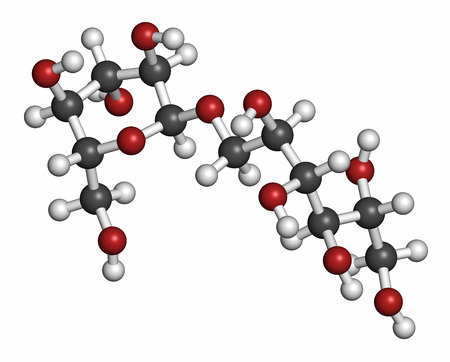disaccharide: Isomalt sugar substitute molecule (one of two components shown). Atoms are represented as spheres with conventional color coding: hydrogen (white), carbon (grey), oxygen (red).