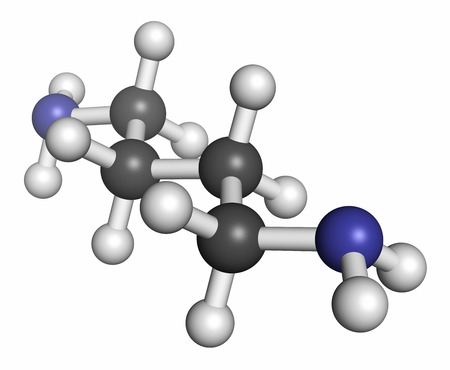 halitosis: Putrescine foul smelling molecule. Atoms are represented as spheres with conventional color coding: hydrogen (white), carbon (grey), nitrogen (blue).