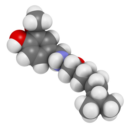 capsaicin: Capsaicin chili pepper molecule. Used in food, drugs, pepper spray, etc.  Atoms are represented as spheres with conventional color coding: hydrogen (white), carbon (grey), oxygen (red), nitrogen (blue). Stock Photo