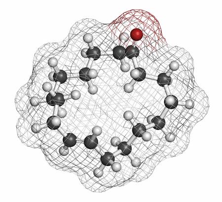 hidrogeno: Civetona civet mol�cula de feromona gato. Usado en perfume. Los �tomos se representan como esferas con codificaci�n de colores convencionales: hidr�geno (blanco), carb�n (gris), ox�geno (rojo).