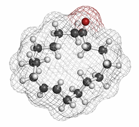 civet cat: Civetone civet cat pheromone molecule. Used in perfume. Atoms are represented as spheres with conventional color coding: hydrogen (white), carbon (grey), oxygen (red).