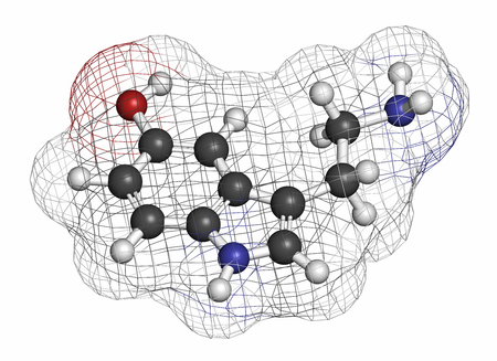 neurotransmitter: Serotonin neurotransmitter molecule. Atoms are represented as spheres with conventional color coding: hydrogen (white), carbon (grey), oxygen (red), nitrogen (blue). Stock Photo