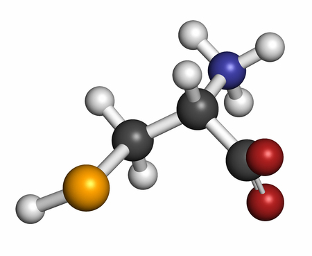 selenium: Selenocysteine (Sec, U) amino acid molecule. Called the 21st proteinogenic amino acid, present in selenoproteins. Atoms are represented as spheres with conventional color coding: hydrogen (white), carbon (grey), oxygen (red), nitrogen (blue), selenium (or