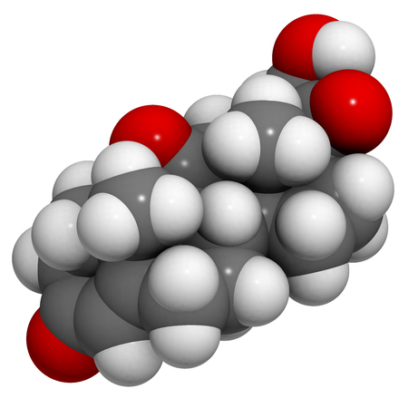 atopic: Cortisone stress hormone molecule. Atoms are represented as spheres with conventional color coding: hydrogen (white), carbon (grey), oxygen (red).
