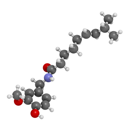 neuralgia: Capsaicin chili pepper molecule. Used in food, drugs, pepper spray, etc.  Atoms are represented as spheres with conventional color coding: hydrogen (white), carbon (grey), oxygen (red), nitrogen (blue). Stock Photo