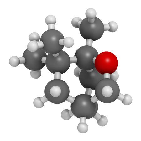 HIDROGENO: Eucaliptol eucalipto molécula de aceite. Los átomos se representan como esferas con codificación de colores convencionales: hidrógeno (blanco), carbono (gris), oxígeno (rojo).