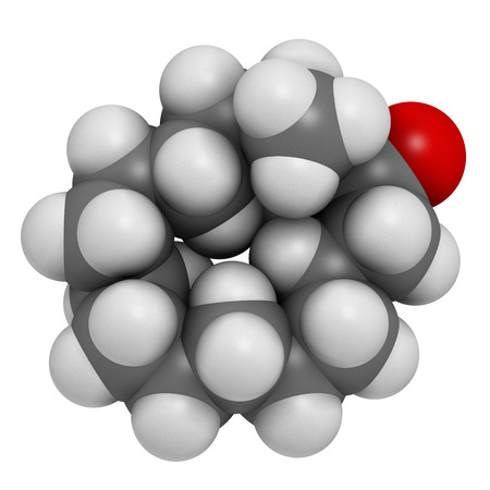musk: Muscone musk odor molecule. Atoms are represented as spheres with conventional color coding: hydrogen (white), carbon (grey), oxygen (red).