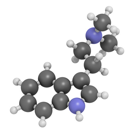 Dimethyltryptamine (DMT) psychedelic drug molecule. Present in the drink ayahuasca. Atoms are represented as spheres with conventional color coding: hydrogen (white), carbon (grey), nitrogen (blue).