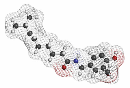 piquancy: Capsaicin chili pepper molecule. Used in food, drugs, pepper spray, etc.  Atoms are represented as spheres with conventional color coding: hydrogen (white), carbon (grey), oxygen (red), nitrogen (blue). Stock Photo