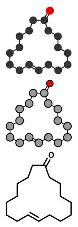 Civetone civet cat pheromone molecule. Used in perfume. Stylized 2D renderings and conventional skeletal formula.