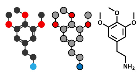 mescaline: Mescaline peyote cactus psychedelic molecule. Stylized 2D renderings and conventional skeletal formula.