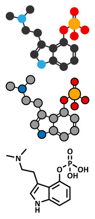 Psilocybin psychedelic mushroom molecule. Prodrug of psilocin. Stylized 2D renderings and conventional skeletal formula.