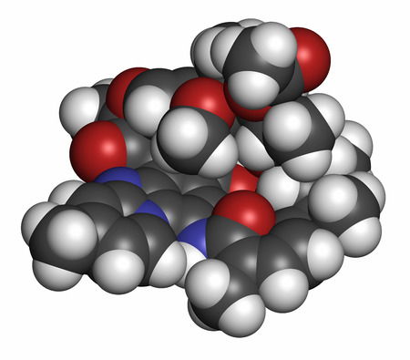 polymerase: Rifaximin antibiotic drug molecule. Atoms are represented as spheres with conventional color coding: hydrogen (white), carbon (grey), oxygen (red), nitrogen (blue).