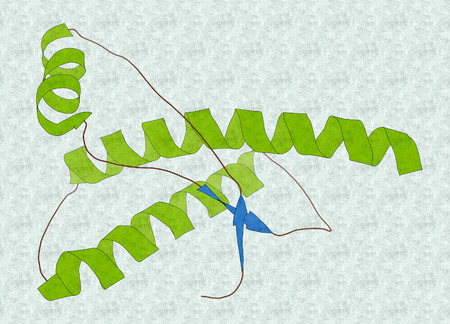 encephalopathy: Human prion protein (hPrP), chemical structure. Associated with neurodegenerative diseases, including kuru, BSE and Creutzfeldt-Jakob. Cartoon representation with secondary structure coloring (blue sheets, green helices). Stock Photo