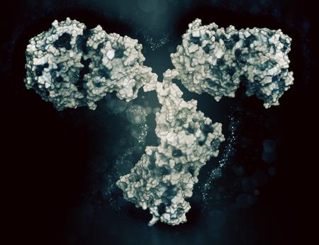 epitope: IgG2a monoclonal antibody (immunoglobulin). Many biotech drugs are antibodies. Cartoon representation combined with semi-transparent surfaces. Stock Photo