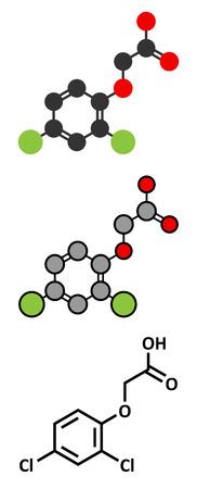 2,4-D (2,4- 디클로로 페녹시 아세트산) 고엽제 성분. 에이전트 오렌지의 농약과 제초제 및 성분으로 사용되는 합성 옥신 식물 호르몬. 양식에 일치시키는 2D 렌더링 및 기존의 골격 식.