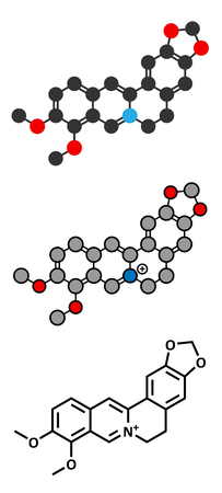 alkaloid: Berberine alkaloid molecule. Present in number of plants. Used as a yellow dye and as a traditional antifungal medicine. Stylized 2D renderings and conventional skeletal formula.