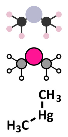 compound: Dimethylmercury  (organomercury compound) molecule. Stylized 2D renderings and conventional skeletal formula.