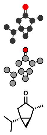 ajenjo: Tuyona molécula de absenta. representaciones 2D y estilizadas fórmula esquelética convencional.