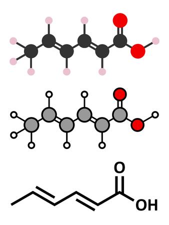 preservative: Sorbic acid food preservative molecule. Sorbate (sodium, potassium, calcium) also used for same purpose. Stylized 2D renderings and conventional skeletal formula.