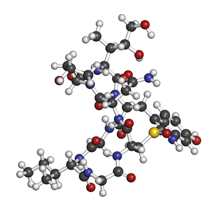 polymerase: Alpha-amanitin death cap toxin molecule. Present in many Amanita mushrooms. Atoms are represented as spheres with conventional color coding: hydrogen (white), carbon (grey), oxygen (red), nitrogen (blue), sulfur (yellow).