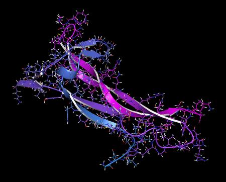 derived: Brain-derived neurotrophic factor (BDNF) protein molecule. Cartoon & stick representation with backbone gradient coloring.