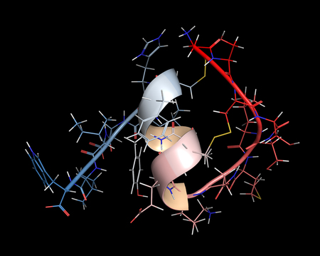 endothelial: Endothelin 1 (ET-1) vasoconstrictory peptide molecule. Cartoon & stick representation with backbone gradient coloring.