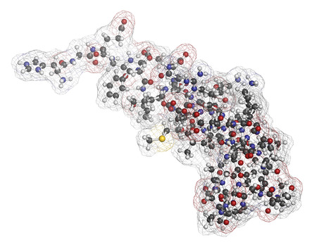 Exenatide diabetes drug molecule. 3D rendering. Atoms are represented as spheres with conventional color coding: hydrogen (white), carbon (grey), nitrogen (blue), oxygen (red), sulfur (yellow).