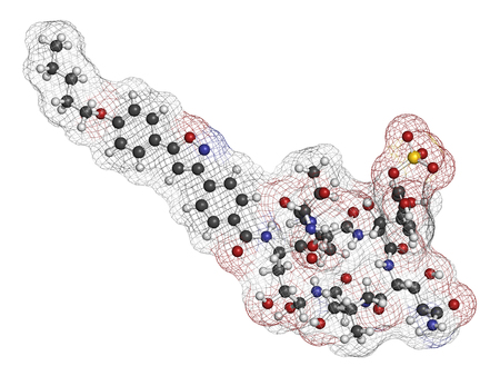 sulfur: Micafungin antifungal drug molecule. 3D rendering. Atoms are represented as spheres with conventional color coding: hydrogen (white), carbon (grey), nitrogen (blue), oxygen (red), sulfur (yellow). Stock Photo