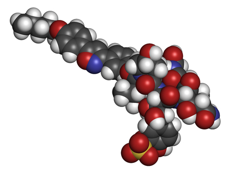 candida: Micafungin antifungal drug molecule. 3D rendering. Atoms are represented as spheres with conventional color coding: hydrogen (white), carbon (grey), nitrogen (blue), oxygen (red), sulfur (yellow). Stock Photo