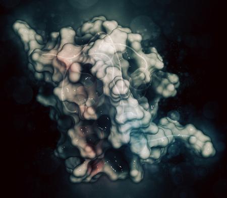 Interleukin 13 (IL-13) cytokine protein. 3D illustration. Cartoon representation combined with semi-transparent surfaces. Stock Photo