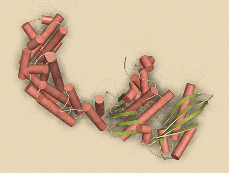 coloring sheets: Collagenase clostridium histolyticum protein. Bacterial enzyme that dissolves collagen. Also used medically in number of diseases. 3D illustration. Cartoon representation with secondary structure coloring (green sheets, red helices).