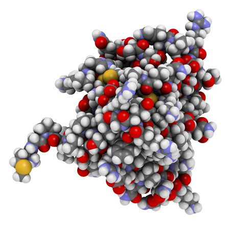 Interleukin 13 (IL-13) cytokine protein. 3D illustration. Atoms shown as spheres with conventional color coding. Stock Photo