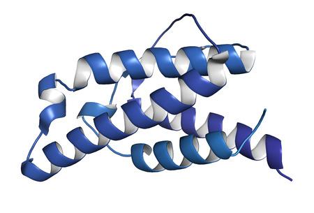 Interleukin 4 (IL-4) cytokine protein. 3D Illustration. Cartoon representation. N-term to C-term gradient coloring. Imagens