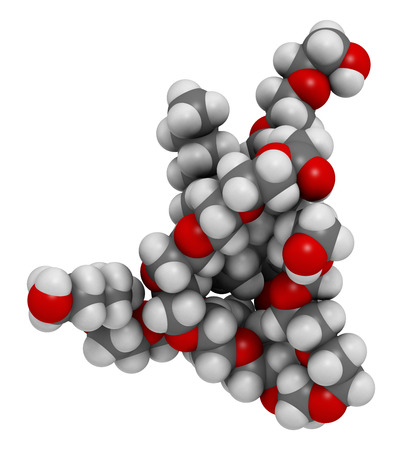 emulsifier: Polysorbate 80 surfactant and emulsifier molecule. 3D rendering.  Used in food (E433), cosmetics and medicines. Atoms are represented as spheres with conventional color coding: hydrogen (white), carbon (grey), oxygen (red).