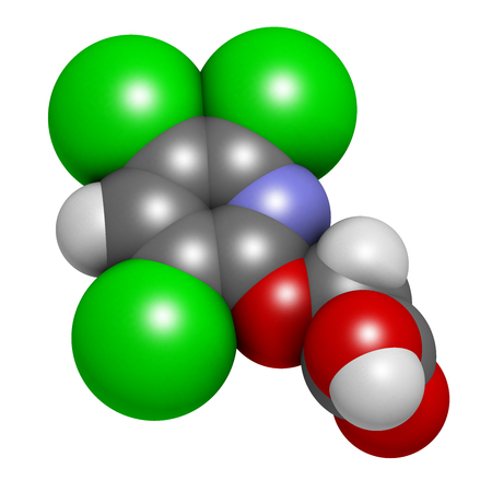 brushwood: Triclopyr herbicide (broadleaf weed killer) molecule. 3D rendering.  Atoms are represented as spheres with conventional color coding: hydrogen (white), carbon (grey), oxygen (red), nitrogen (blue), chlorine (green). Stock Photo