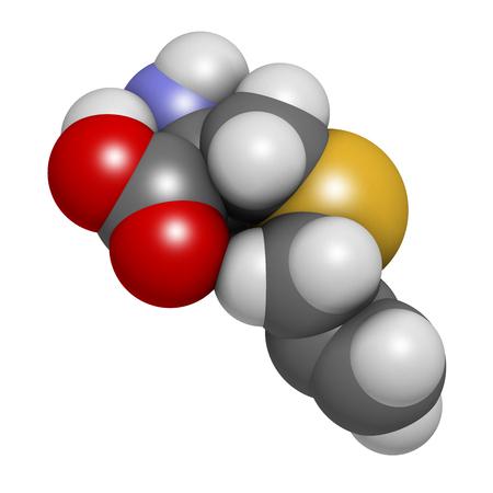 hidrogeno: mol�cula de ajo aliina. representaci�n 3D. Los �tomos se representan como esferas con codificaci�n de colores convencionales: hidr�geno (blanco), carbono (gris), ox�geno (rojo), azufre (amarillo).