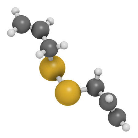 odors: Diallyl disulfide garlic molecule. 3D rendering.  One of the compounds responsible for taste, smell and health effects of garlic. Atoms are represented as spheres with conventional color coding: hydrogen (white), carbon (grey), sulfur (yellow).
