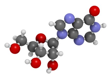 purine: Inosine nucleoside molecule. 3D rendering.  Found in tRNA. Used as fitness nutritional supplement.  Atoms are represented as spheres with conventional color coding: hydrogen (white), carbon (grey), oxygen (red), nitrogen (blue). Stock Photo