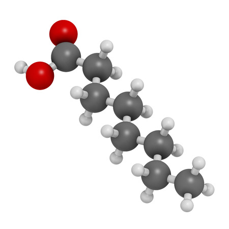 fungicide: Caprylic (octanoic) acid. Medium-chain fatty acid, used as antimicrobial agent, food supplement and chemical intermediate. Atoms are represented as spheres with conventional color coding: hydrogen (white), carbon (grey), oxygen (red).