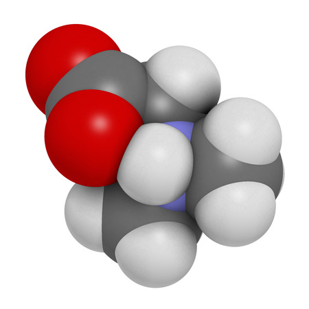 glycine: Dimethylglycine (DMG) molecule. 3D rendering.  Methylated derivative of glycine, used in performance enhancing nutritional supplements.  Atoms are represented as spheres with conventional color coding: hydrogen (white), carbon (grey), oxygen (red), nitrog