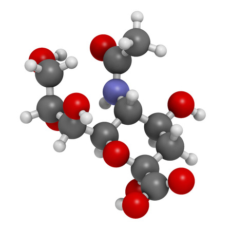 nitrogen: Sialic acid (N-acetylneuraminic acid, Neu5Ac, NANA) molecule. 3D rendering.   Atoms are represented as spheres with conventional color coding: hydrogen (white), carbon (grey), oxygen (red), nitrogen (blue). Stock Photo