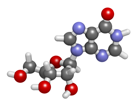 antiviral: Inosine nucleoside molecule. 3D rendering.  Found in tRNA. Used as fitness nutritional supplement.  Atoms are represented as spheres with conventional color coding: hydrogen (white), carbon (grey), oxygen (red), nitrogen (blue). Stock Photo