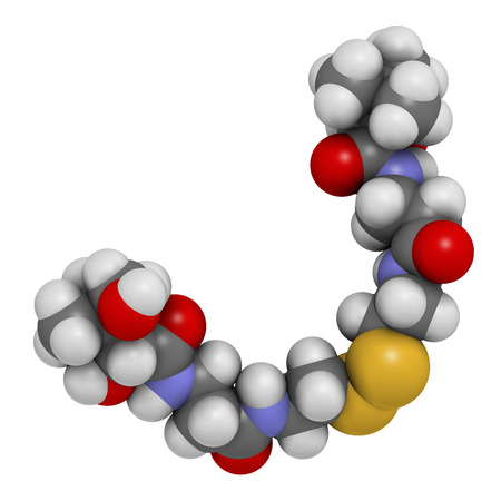 nitrogen: Pantethine (dimeric vitamin B5) molecule. 3D rendering.  Used in dietary supplements. Atoms are represented as spheres with conventional color coding: hydrogen (white), carbon (grey), oxygen (red), nitrogen (blue), sulfur (yellow).