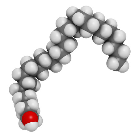 eg: Octacosanol plant wax component molecule. 3D rendering.  long chain fatty alcohol, present in e.g. the waxy cover of eucalyptus leaves. Main constituent of policosanol nutritional supplement. Atoms are represented as spheres with conventional color coding