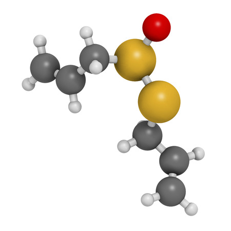 alliaceae: Allicin garlic molecule. 3D rendering.  Formed from alliin by the enzyme alliinase. Believed to have a number of positive health effects. Atoms are represented as spheres with conventional color coding: hydrogen (white), carbon (grey), oxygen (red), sulfu